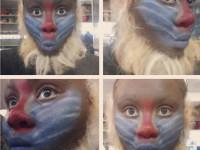 Theatrical Animal Make Up w/ false hair
