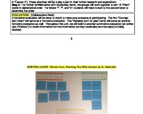 edTPA Lesson Plans