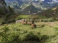 Andes Cusco SacredValley