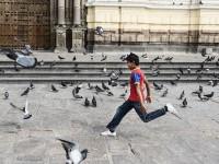 Chasing Birds in Lima