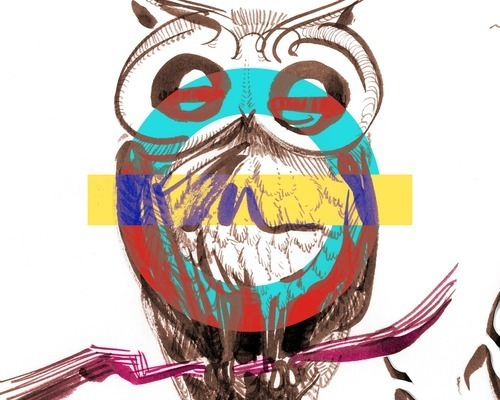 Underground Owl