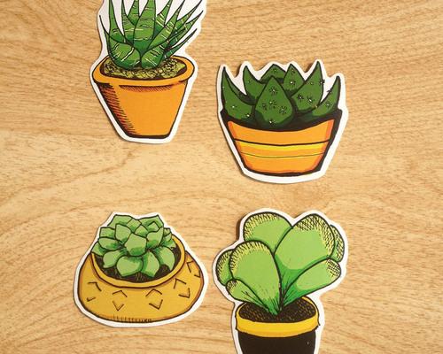 Succulent Stickers